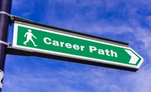 Career guidance including apprenticeships