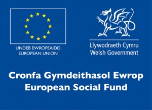 ESF Logo - Apprenticeships
