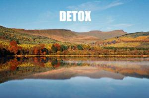 Company culture detox