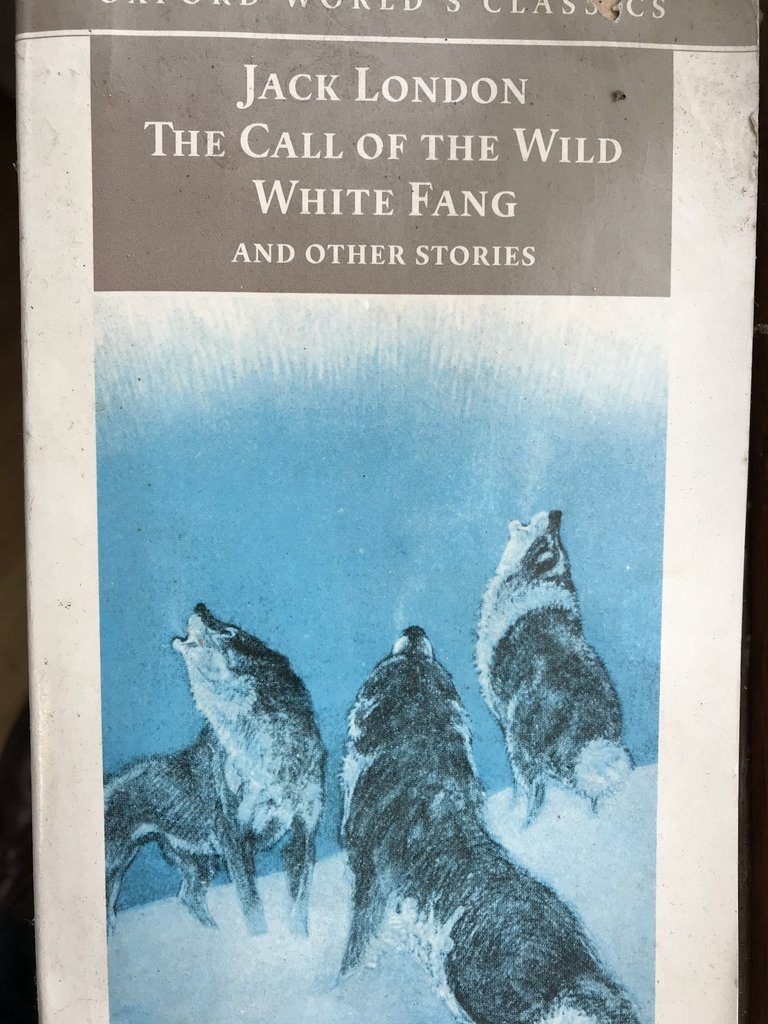 Original White Fang Call Of The Wild Cover